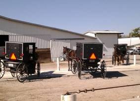 Amish horse-and-buggies outside the Antique Sale Barn