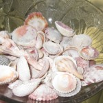 a bowl of sea shells