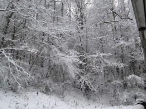 Constant snow