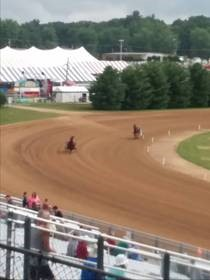 Harness racing at the 4-H Fair