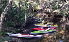 Our kayaks beached on a riverbank.