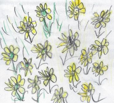 LindaSue's drawing